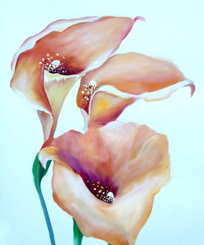 Arum lilly_Nisuris_A